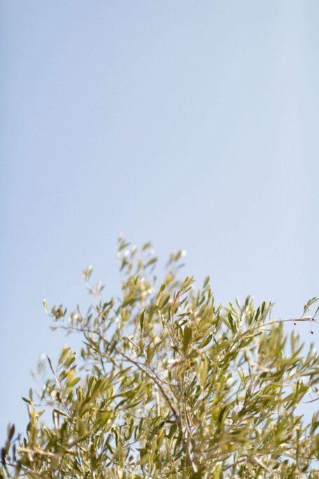 photos-de-mariages-en-corse-Ajaccio